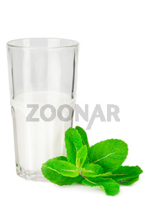 Glass of milk with fresh mint