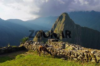Abendstimmung Machu Picchu