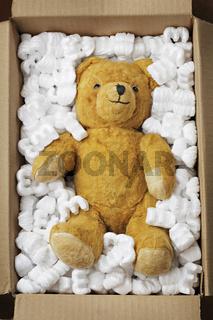 Teddy bear transport