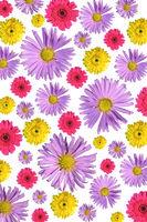 Blumenanordnung01 Kopie2.jpg