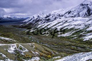 Neuschnee auf den Bergen der Alaskakette und in der Tundra / Denali Nationalpark  -  Alaska