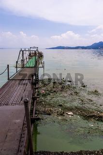 Umweltverschmutzung am Kunming-See, China