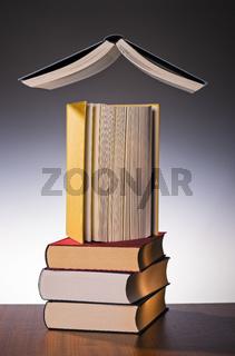 Symbolfoto Lesen