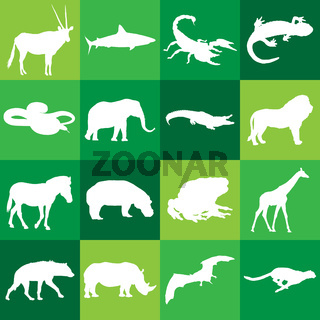 Different african animals