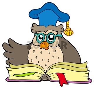 Cartoon owl teacher with book - isolated illustration.
