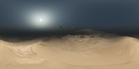 panorama of palms in desert at sand storm. made with the one 360 degree lense camera without any seams. ready for virtual reality