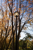 Metal old lantern on the background of the autumn trees