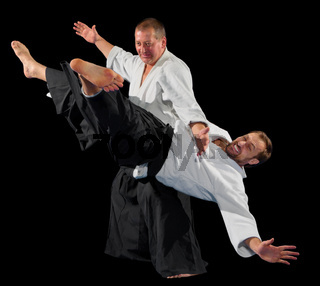 Men martial arts fighters isolated