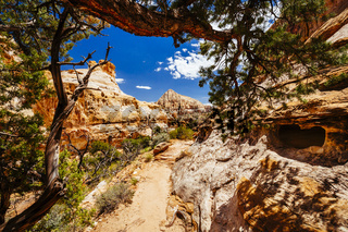 The Hickman Bridge Trail, Capital Reef National Park, Utah, USA