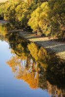 Riverbank reflections
