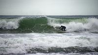 Surfer Surfing Wave