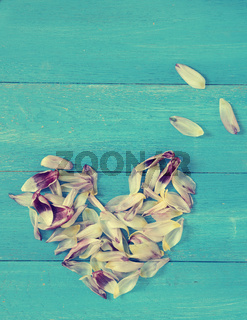 Heart shapes of tulip leaves