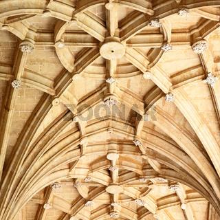 Gothic stone vaulting