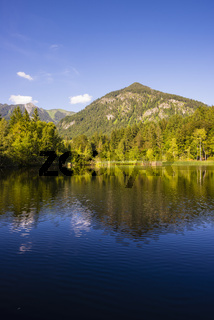 Moorweiher bei Oberstdorf