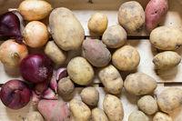Kartoffeln und anderes Wurzelgemüse in einer Holzkiste
