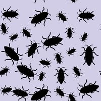 Beetle insect seamless pattern 668