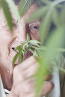 Happy senior woman smelling Cannabis plant
