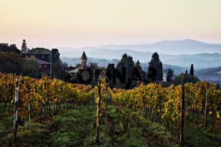 Weinort Lilliano, Toskana, Italien
