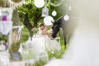 bridal couple in garden wedding
