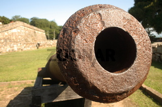 War Fort Cannon