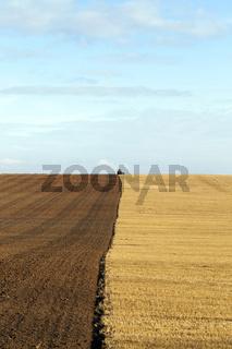 plowed soil