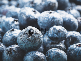 Extreme close up Blueberries