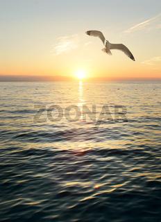 Wonderful sunset scene