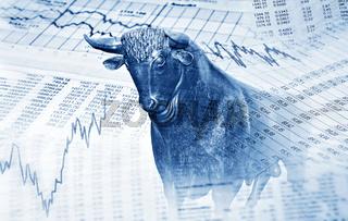 Finanzsymbole und Bulle