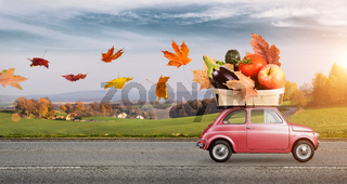 Autumn food delivery