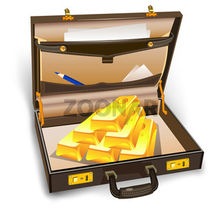 Case with gold