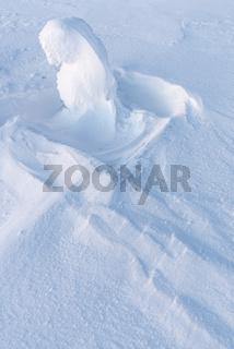 verschneite Fichte, Riisitunturi Nationalpark, Lappland