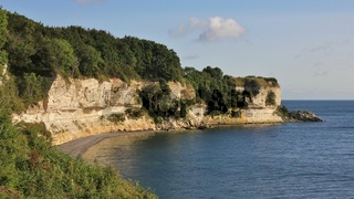 Stevns Klint, chalk stone cliff at the east coast of Denmark.