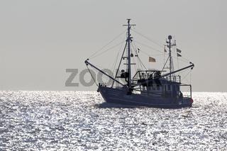 Krabbenkutter bei Cuxhaven auf der Elbe, Niedersachsen, Deutschland, Europa Saxony, Germany, Europe