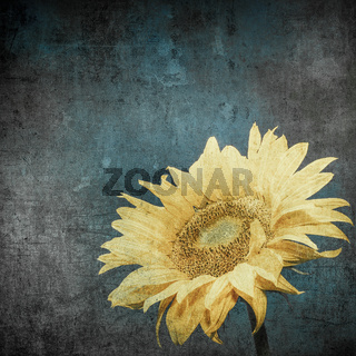 vintage image of sunflower on grunge background