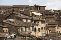 The roofs of Siena