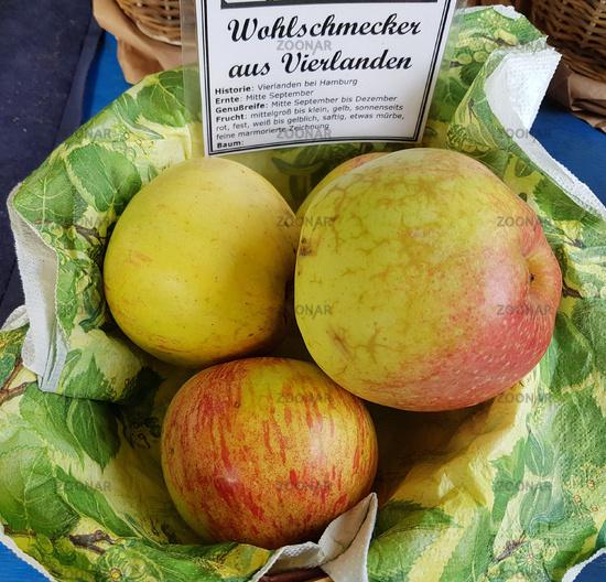 Wohlschmecker aus Vierlanden, Apfel, Malus, domestica, Alte Apfelsorte