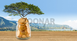 Concept image of wealth growing on trees out of gold coins