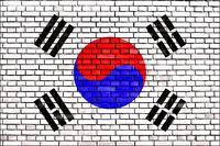 flag of Korea painted on brick wall