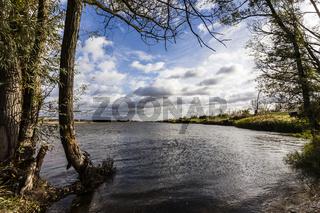 Fluss Oder im Oderbruch, Brandenburg, Deutschland