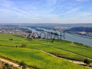 Beautiful valley of River Rhine