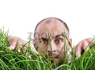 Man peering through tall grass
