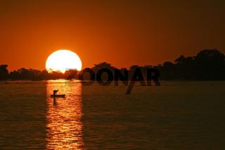 Fischerboot im Sonnenuntergang auf dem Chobe Fluss, Chobe River, Chobe National Park, Botswana, Afrika, fishing boat at sunset, Africa