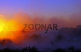 Morgennebel am Ufer des Okavango, Namibia