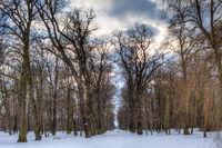 Schlosspark Thallwitz im Winter