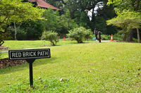 Singapore Botanic Garden With red brick path