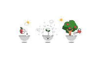 Steps of plant growth. Timeline infographic design. vector illustration
