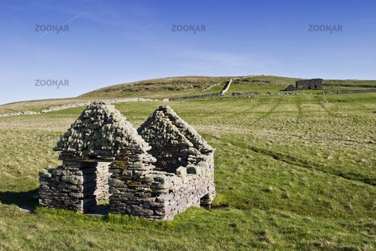 Old ruins at the heathland