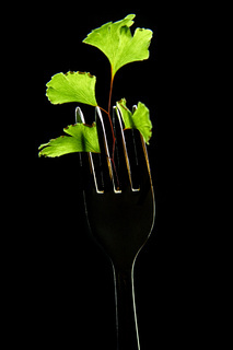 Green leaves on a fork