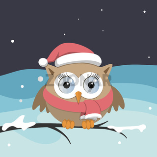 Female owl with Santa Claus hat on a branch