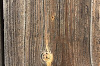 Texture of the old dry pine boards 20547